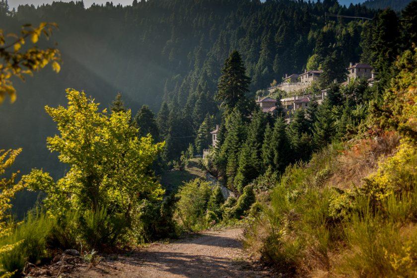 The Autumn Forest Yoga Retreat: Ακολούθησε το δάσος!