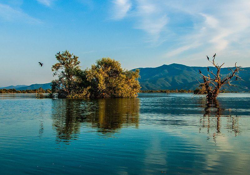 The Winter Lake, Yoga & Spa Retreat